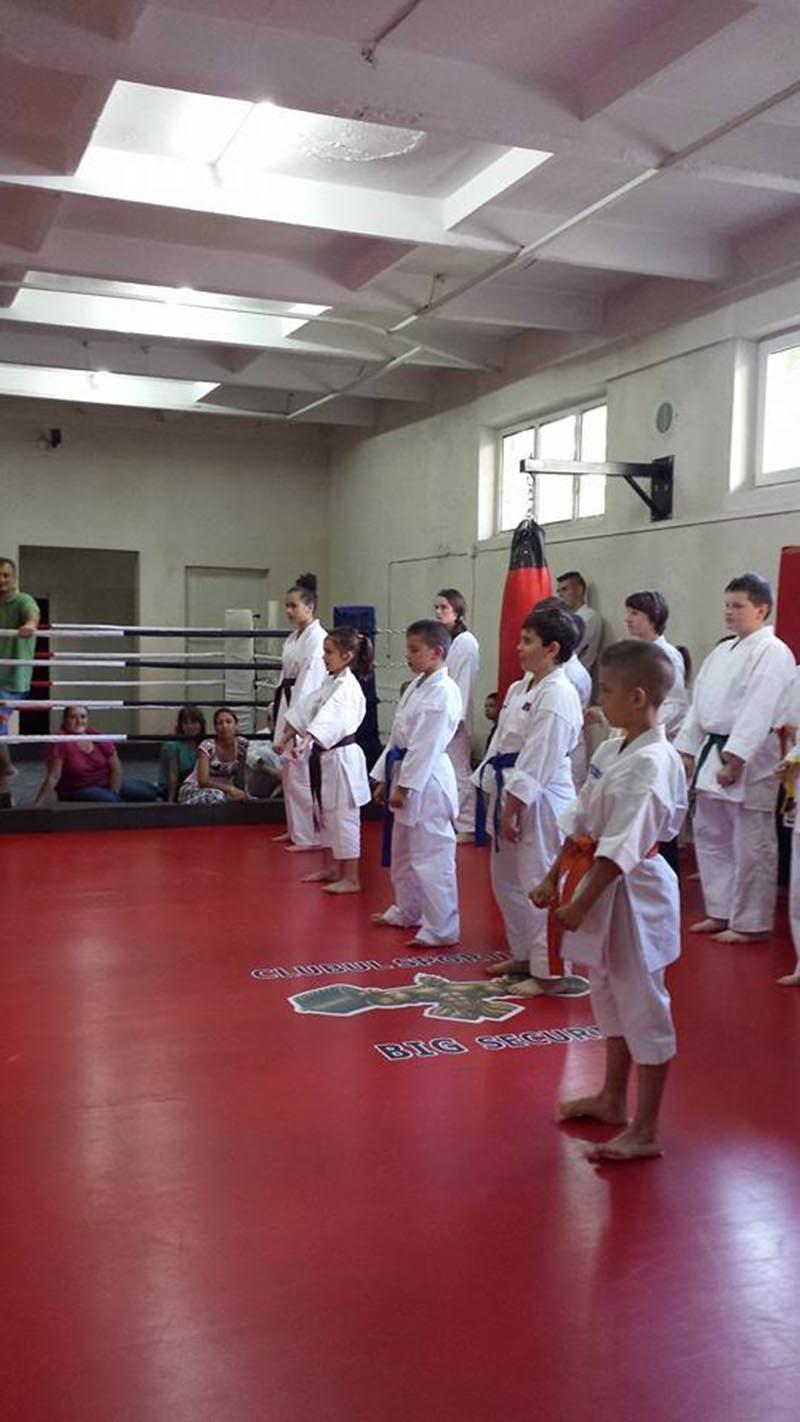 Portofoliu Asociatia Judeteana Karate Satu Mare Tatami Pro