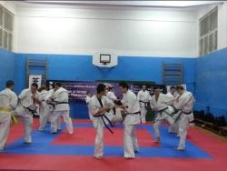 Ashisara Karate Piatra Neamt_10