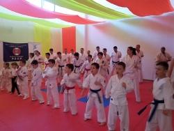 Ashihara Karate Piatra Neamt