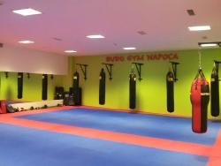 Bodo Gym Napoca - Kyokushin Karate _4
