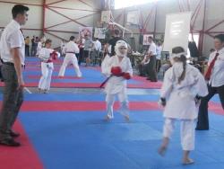 CS Elite Martial Arts Karate - Cluj Napoca
