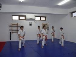 CS Aikido, Kyokushin Giurgiu _5