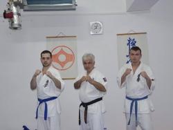 CS Aikido, Kyokushin Giurgiu