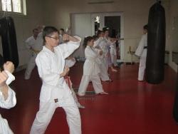 Asociatia Judeteana Karate Satu Mare_1