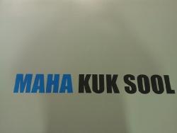Maha Kuk Sool Madrid_6
