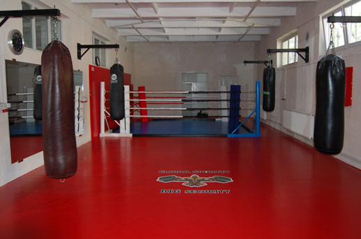 Boxing Ring Tatami Pro